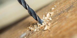 Quels forets pour percer le bois ?
